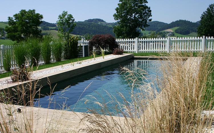 Schwimmteich Naturpool Bio-Pool Wasser im garten gartenzauner