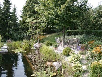 GartenZauner Wasser im Garten