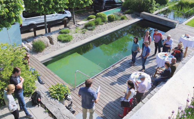 Wassertour, Wasser-tour, gartenzauner, Wasser im garten, Schwimmteich, Naturpool, oö, Oberösterreich, Gartengestaltung