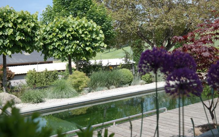 Gartenzauner Schwimmteich