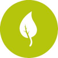 icons frühlingspflegepakete_