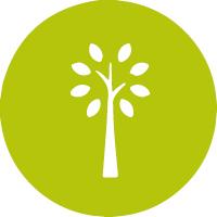 icons frühlingspflegepakete_2