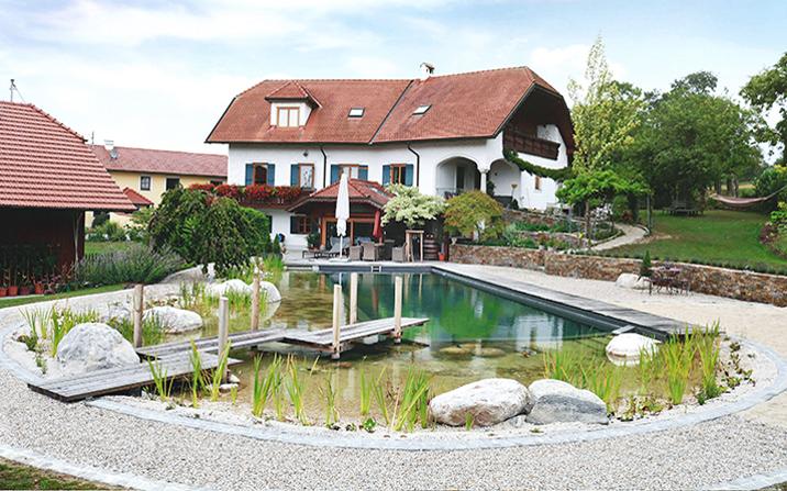 GartenZauner, Schwimmteich, Wasser im Garten, Gartengestaltung, Gartenplanung, Naturpool, OÖ, Oberösterreich