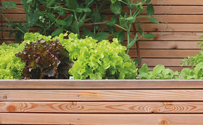 Holz im Garten Gartenraum Magazin GartenZauner