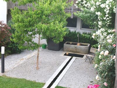 Rosenpflege, gartenzauner, Gartengestaltung, Gartenpflege, Bayern, Wien, Salzburg, Österreich, Oberösterreich