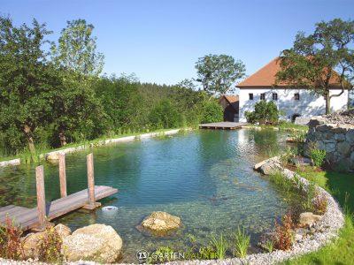fantastischer Schwimmteich von GartenZauner